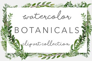 Wild Watercolor Greenery Clipart