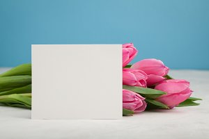 Birthday or wedding mockup with white paper list, pink tulip flowers on blue background. Beautiful woman day card