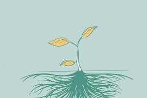 Drawing illustration of development