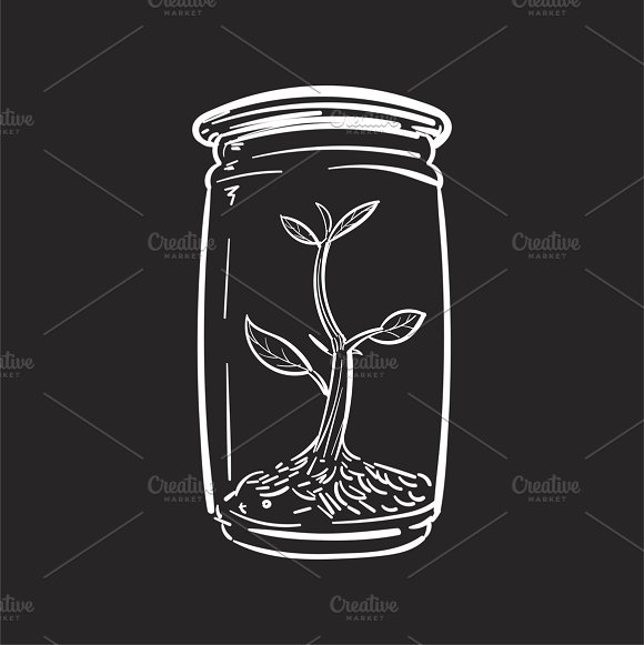 Growth And Development Vector