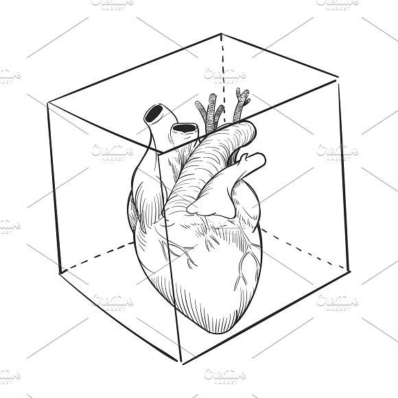 Illustration Of Captived Heart