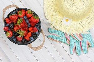 Bucket Berries and Sun Hat