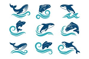 Stylized pictures of marine animals. Sharks, fishes and others. Symbols for logo design