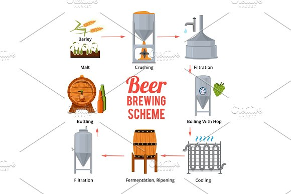 Stages Of Beer Production Vector Symbols Of Brewery