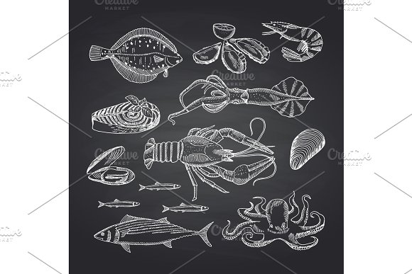 Vector Hand Drawn Seafood Elements On Black Chalkboard Set