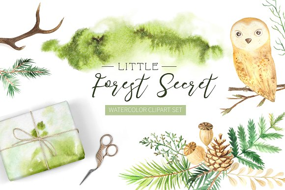 Watercolor Forest Graphic Set