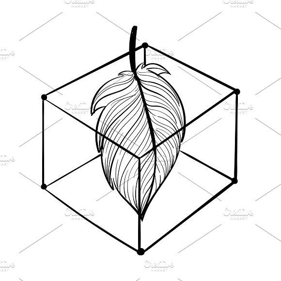 Illustration Of Leaf In A Box