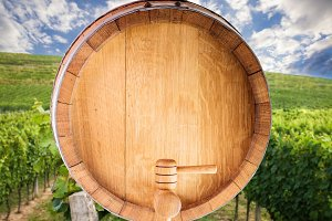 Wine barrel over vineyard