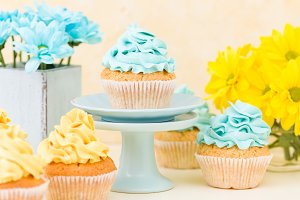 Chrysanthemum and cupcakes