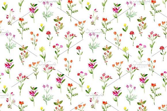 Watercolor Meadow Flowers