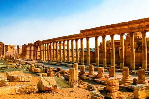 Panorama of Palmyra columns and ancient city, destroyed now, Syr