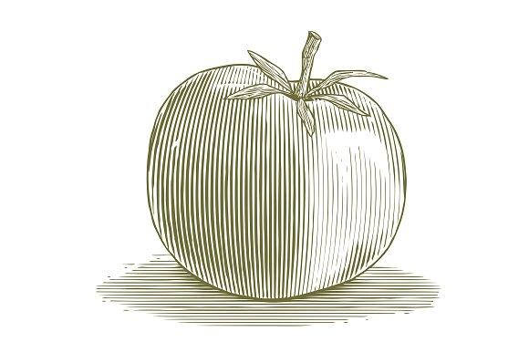 Woodcut Tomato