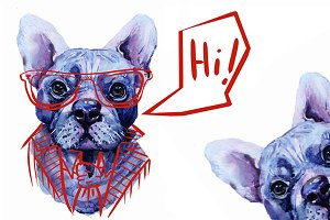 real watercolor French bulldog