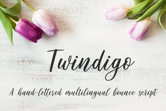 Twindigo Script Font