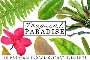 Tropical Leaves & Flowers Bundle