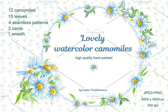 Lovely Watercolor Camomiles