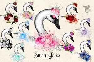 Swan Faces Clipart