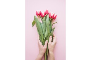 Woman's hand holding tulips