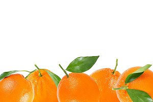 Background oranges with leaf
