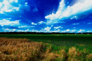 Dramatic light rays over summer field landscape backdrop