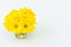 Yellow chrysanthemum in glass