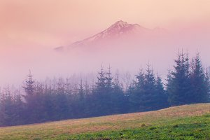 Spring foggy morning in mountains