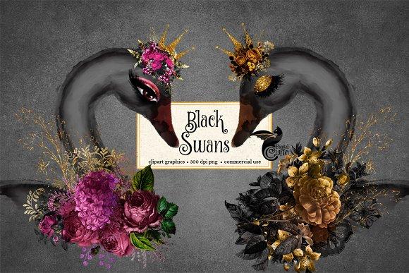 Black Swan Clipart