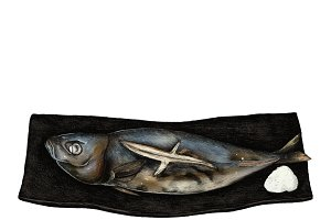 Illustration of Japanese Fish Dish