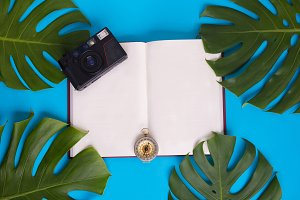 Top view - Open book with blank pages decorated with green monstera leaves, camera, and compass over pastel blue background - with copy space - vacation and tourism planning concept