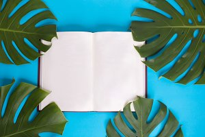 Top view - Open book with blank pages decorated with green monstera leaves over pastel blue background - with copy space
