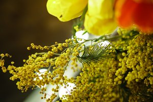 Bouquet of mimosa and tulips