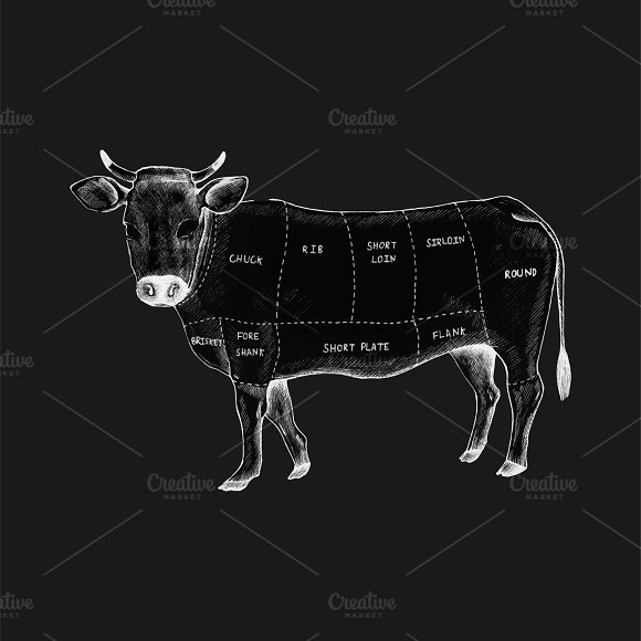 Different Parts Of A Cow