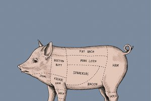 Different parts of a pig
