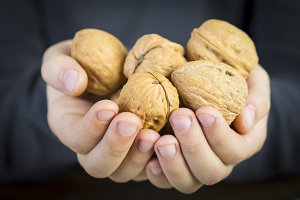 Child offering walnuts with his hands