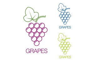 Grape sign. Logo wine production