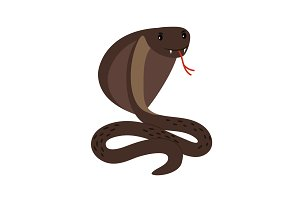 Cobra. Brown poisonous cobra snake attack position vector illustration on white