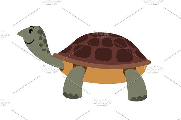 Cute Turtle Vector Cartoon Turtle Pet Vector Illustration