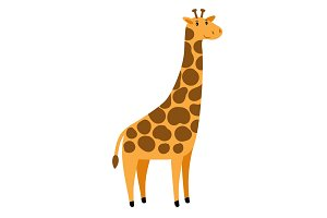 Giraffe. Vector cartoon tall giraffe character, cute african animal with spots on white