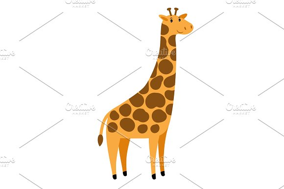 Giraffe Vector Cartoon Tall Giraffe Character Cute African Animal With Spots On White