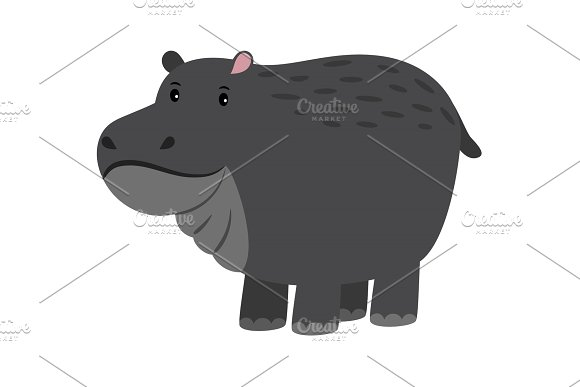 Hippo Cute Vector Cartoon Hippopotamus Adorable African Behemoth Animal River-horse On White