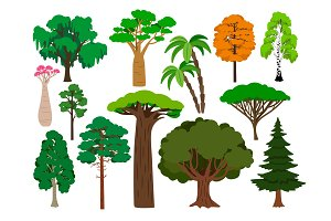 Cartoon trees. Vector green tree set, brachychiton and rowan, palm and willow, maple and poplar