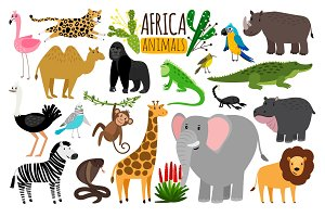 African animals. Various wildlife animals of Africa, vector monkey or marmoset and leopard, parrot and rhinoceros