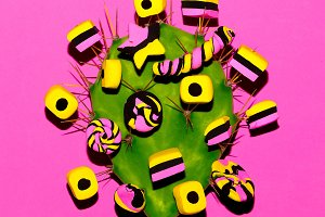 Candy Cactus Design. Fashion Candy