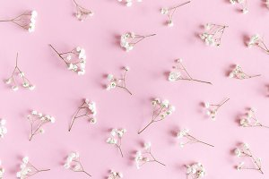 Floral pattern made of gypsophila