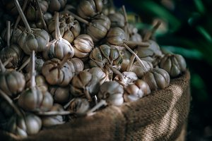 Garlic Inside a Giant Hemp Bag