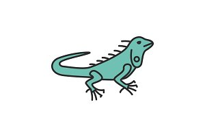 Iguana color icon
