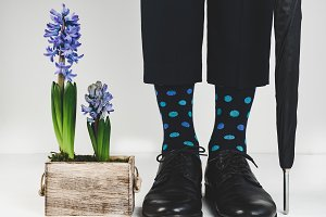 Stylish black shoes, bright socks, black umbrella and beautiful, flowering plant on a white background. Style, fashion, beauty