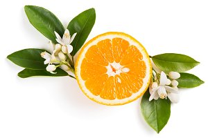 Orange fruit and flowers.