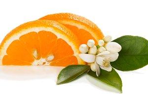 Sliced orange, flower and leaves.
