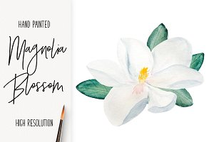 Watercolor Magnolia Blossom